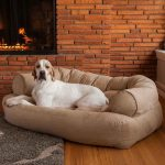 Comfy couch for dog