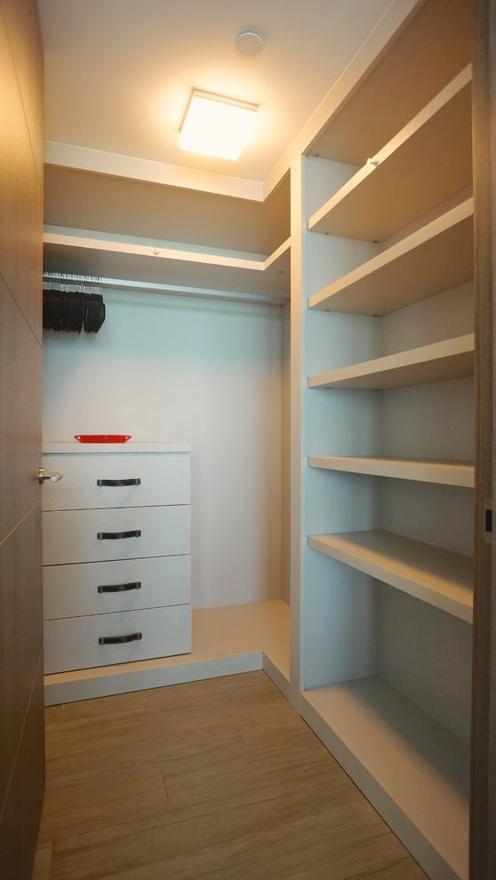 Modern Minimalist Walk In Closet