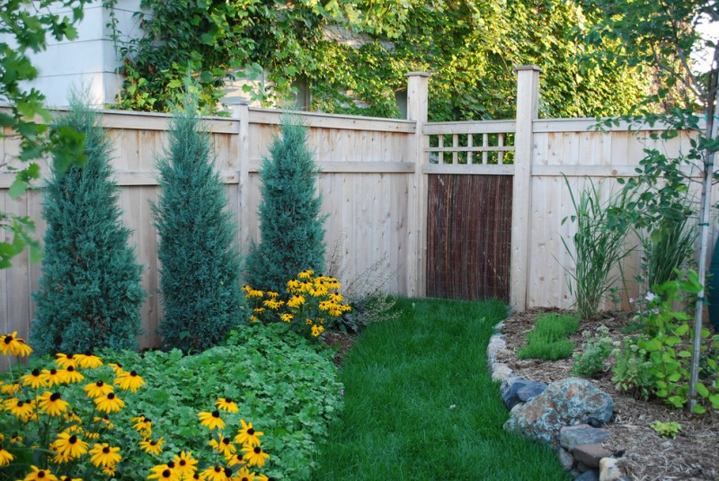 contemporary wood fencing idea with dark finishing frontgate