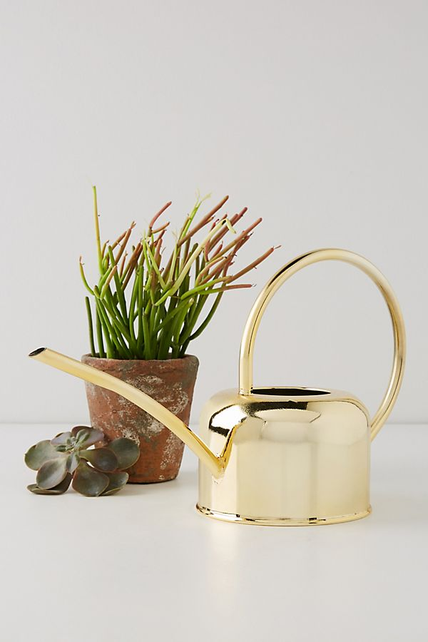 golden watering can with longer fountain terracotta plant pot
