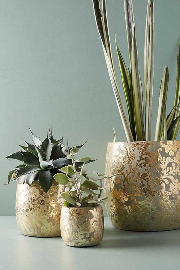 metallic pots with gold floral motifs for houseplants