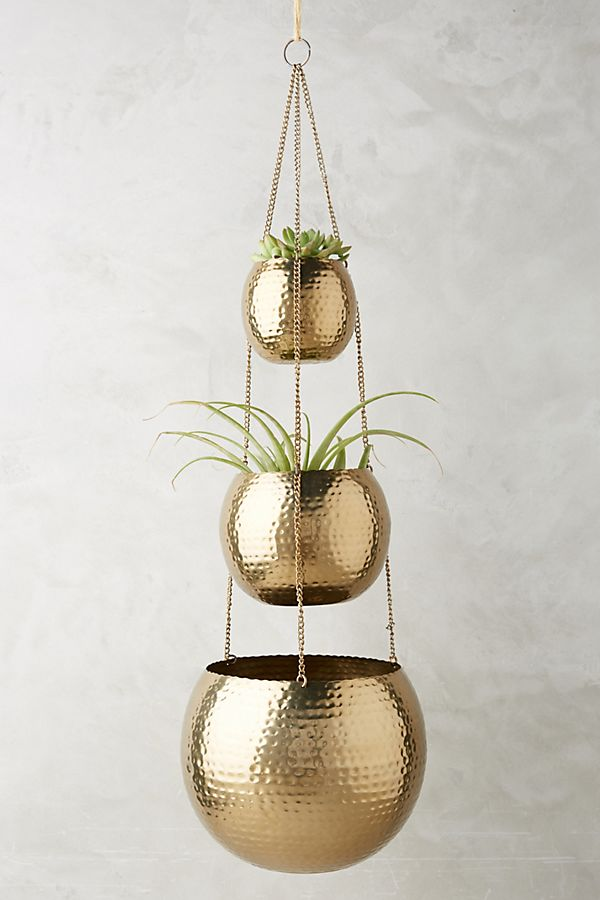 trio plant hangers in textural gold with iron chain