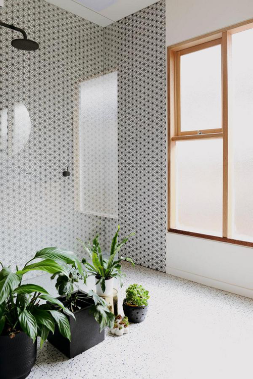 open shower space with single glass panel patterned tiles walls mini houseplants with black pots wood framed windows