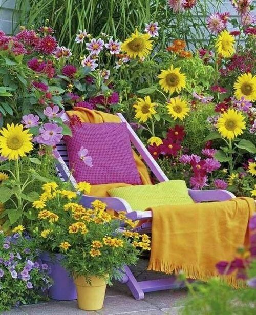 wood recliner chair magenta throw pillow yellow blanket blosomming sunflowers