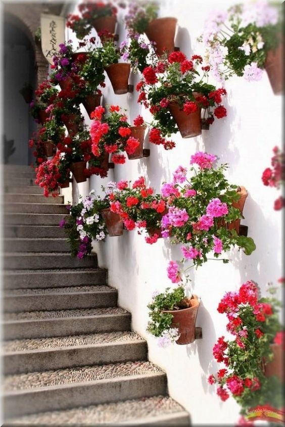 colorful flowers on wall mounted clay pots alongside of stairway