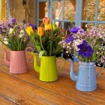Colorful Watering Can Planters