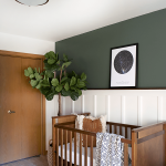 Earthy Rustic Nursery Room Dark Wood Baby Crib Boho Styled Area Rug White Wainscoting Wall Woodland Green Wall Houseplant