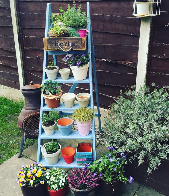 ladder for plants with small colorful pots