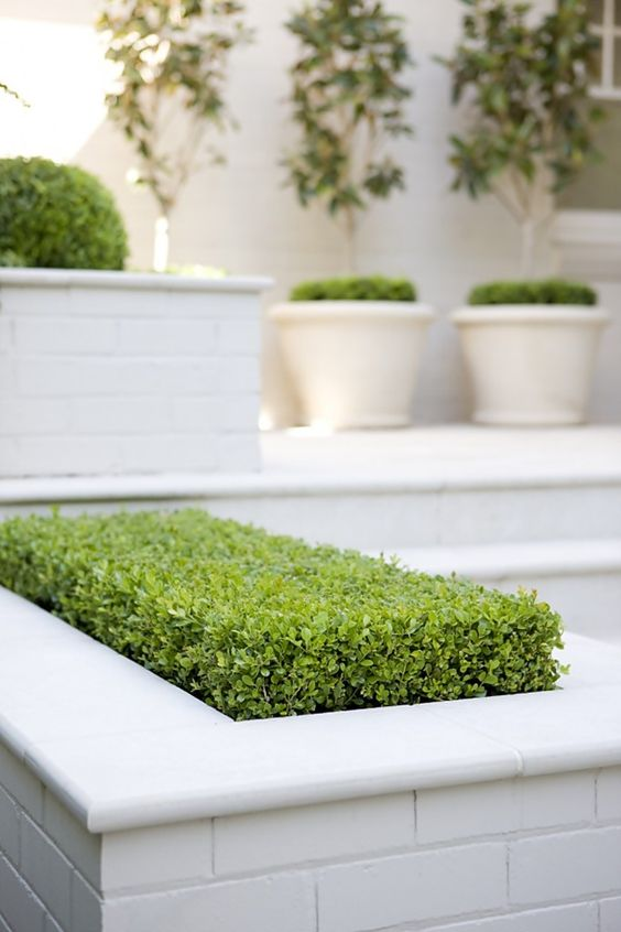 minimalist garden setting idea green bed in white subway tile planters