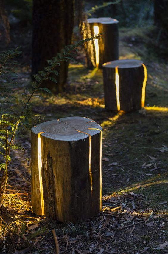 creative & innovative tree trunk seats with light inside