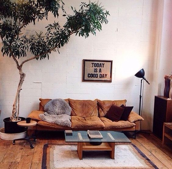 warm look living room in neutral tone brown couch glass coffee table wood board floors white painted pallet walls modern floor lamp bigger houseplant