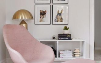 midcentury modern chair and table in too light pink white bookshelves black framed animal photographies