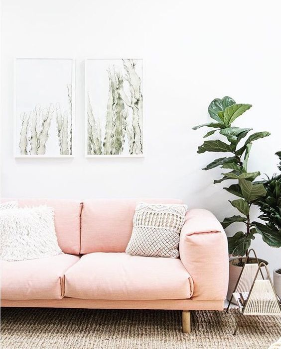 midcentury modern sofa in soft pink fury white throw pillow white woven throw pillow textured area rug medium size houseplant