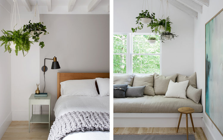 hanging plants bed frame with wood headboard white bedside table light wood floors modern table lamp light gray couch with throw pillows light wood floors midcentury modern side table with round top
