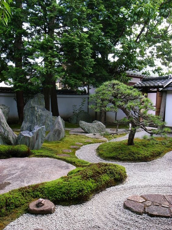 Asian inpsired garden with Bonsai dan some rocks