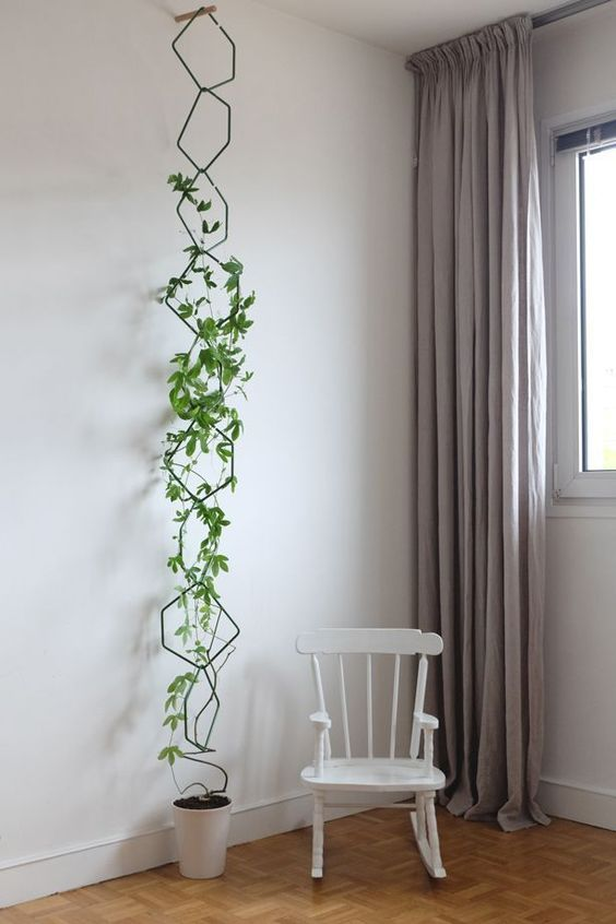 mini vertical garden with hexagon wire planting media small chair in white