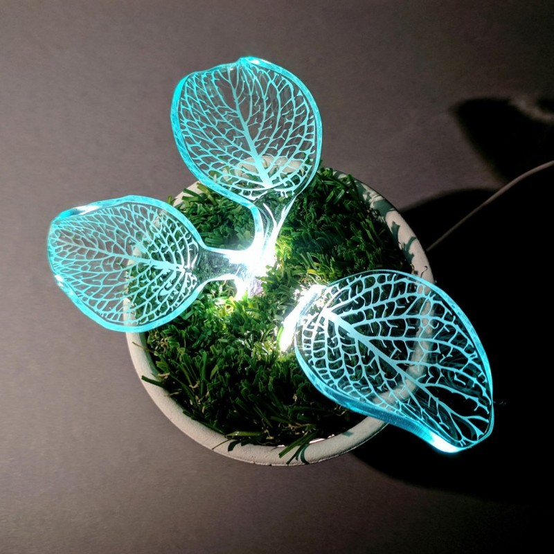 sprout plant lamp on pot