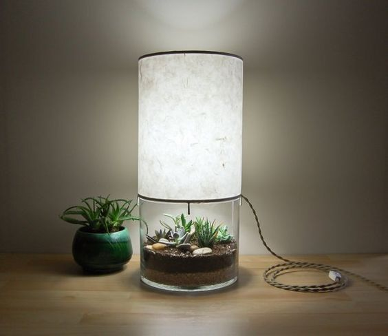 terrarium table lamp idea with under terrarium accent