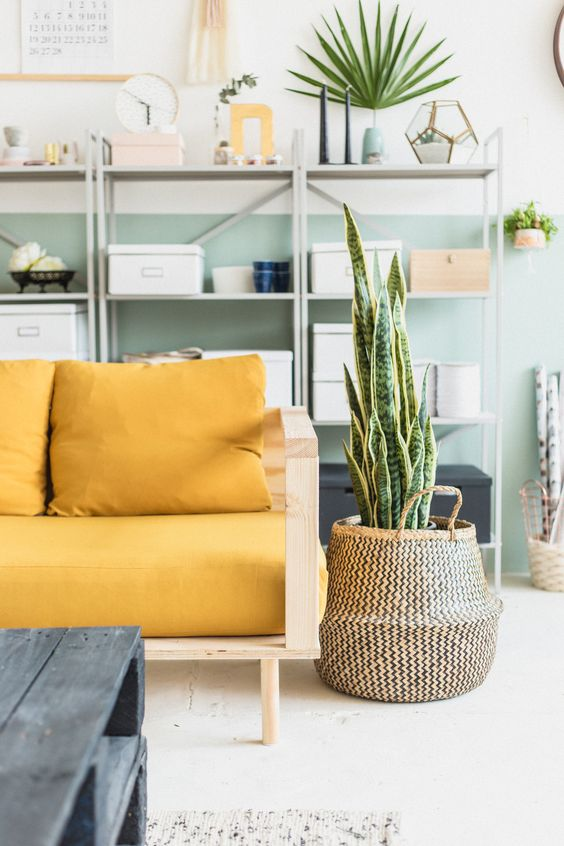simple and soft toned living room furnished with light wood framed sofa with yellow cushions