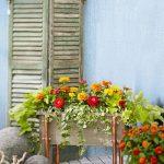 Mini Garden Display As The Spring Refresh Idea