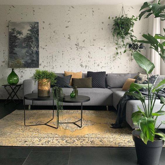 gray modular sofa with colorful throw pillows round top modern coffee tables in black worn out area rug stained white walls potted greenery