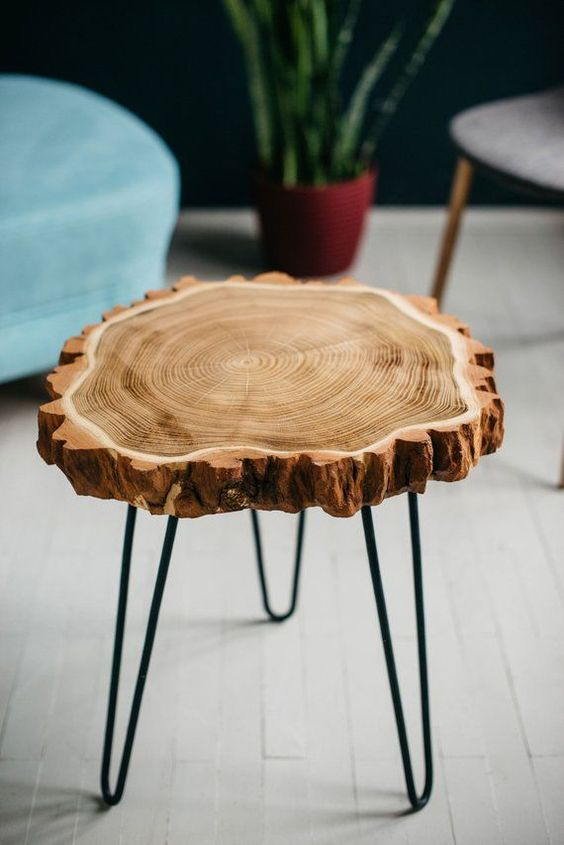 tree trunk cut coffee table with hairpin legs