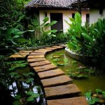 Rough Surface Stone Pathway Surrounded By Pond Lots Of Tropical Plants