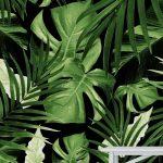Tropical Jungle Wallpaper Idea