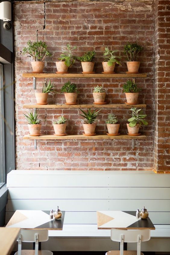 interior cafe with eco friendly concept red brick walls with series of greenery on pot