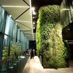 astonishing green accent for hotel with elegant hallway also extravagant large glass window overlooking outside view with concrete flooring