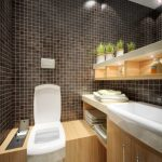 fantastic Cabinets Thought On The Wall Above Vainness Sink also Lighting Ceiling Gorgeous Small Rest room Concepts With Mosaic Tile Wall Beside water closet