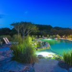 luminious natural swimming pool green backyard beautiful garden luminous house picturesque natural swimming pool