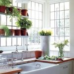 garden window in the kitchen many pots and plants kitchen faucet and diswashing sink stainless steel standing for drying the plates
