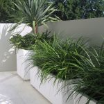 Any Size Of Concrete Planter Boxes In White Color And They Are Made From Ceramic