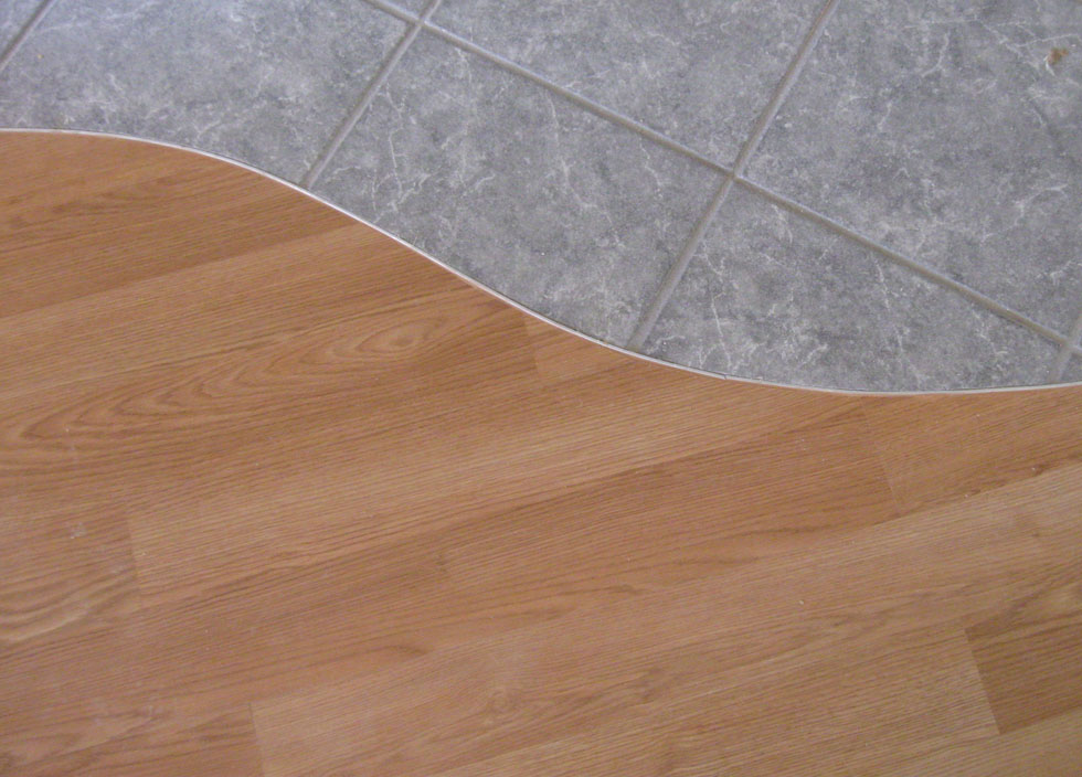 Tile to wood floor transition ideas homesfeed for Floor to floor