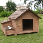 cool realistic nice adorable wonderful dog house idea with wooden concept material with nice cook outdoor feeding place