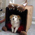 cute dog crate in animal figure with metal-wire as the main crate plan