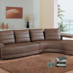 Deluxe Brown Leather Sofa For Living Room Cozy And Soft Brown Fury Carpet With A Pile Of Books And Square Drinking Glasses Wood Finish Floor