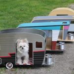 dog houses with trailer designs and food and drink containers
