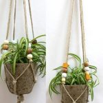 haging indoor plants ornament with fired-clay pot