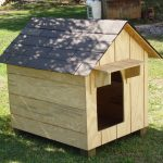 home-made dog house with door shed