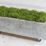 Movable Concrete Planter Box With Beautiful Green Ornamental Plants