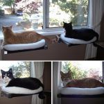 small-adorable-various-nice-fantastic-awesome-dog-window-perch-with-white-accent-soft-cloth-cover-with-wooden-frame-for-cats