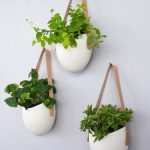 three units of casual white pots with fresh and green plants hang on the wall