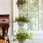 three vertical arrangements of hanging indoor plants ornaments