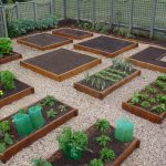 a particular area containing some wood boxes as the raised beds to grow up the plants wood fence system