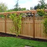 adorable-cool-classic-nice-unique-special-backyard-fencing-idea-with-paradise-restored-landscaping-concept-made-of-wood-and-higher-with-green-plants-decoration