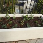 adorable-nice-cool-large-medium-concrete-planter-boxes-with-white-box-square-concept-design-for-small-plants-put-in-front-of-the-house