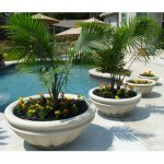 concrete or cement tree planters in round shape