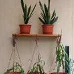 creative-nice-adorable-small-simple-shelve-hanging-plants-with-small-board-wooden-mad-concept-with-some-hanged-pots